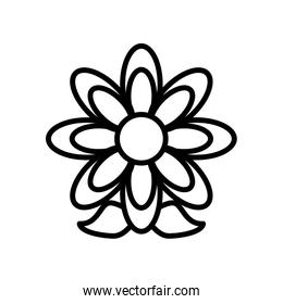 cute flower line style icon isolated