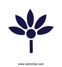 beautiful flower silhouette style icon