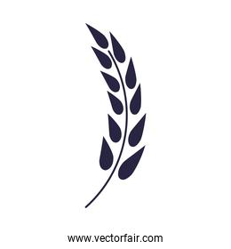 wheat spike elegant decoration icon