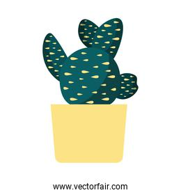 Isolated cactus plant inside pot vector design