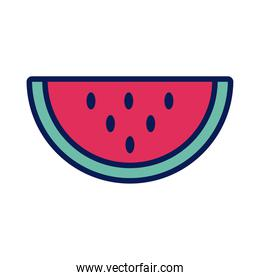 watermelon fresh fruit line and fill icon