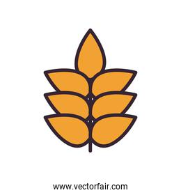Wheat ear line and fill style icon vector design