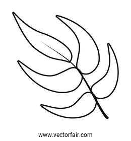 heliconia leaves icon, line style
