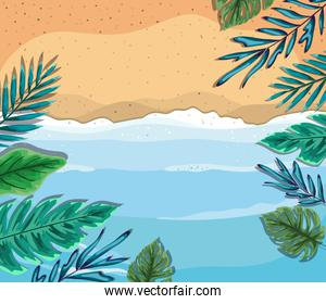 beach with leaves top view vector design