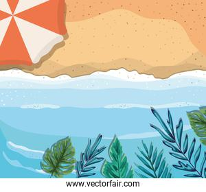 beach with umbrella and leaves top view vector design