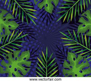 background of tropical branches and leaves