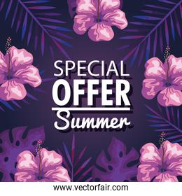 special offer summer, banner with flowers and tropical leaves background, exotic floral banner