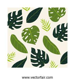 leafs plants tropical pattern background