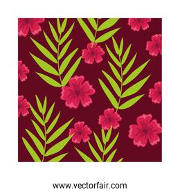 pink flowers plants tropical pattern background