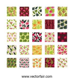 leafs and plants tropical patterns backgrounds