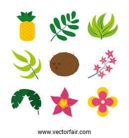 leaves and tropical fruits icon set, flat style