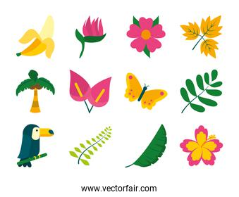 butterfly and tropical leaf icon set