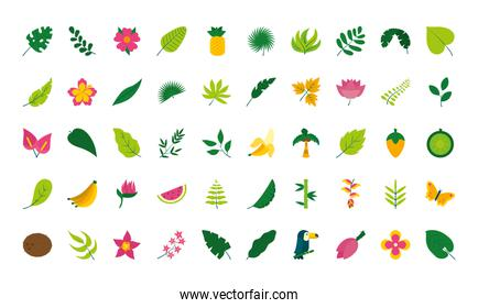 tropical leaves and flowers icon set, flat style