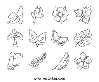 butterfly and tropical leaf icon set, line style