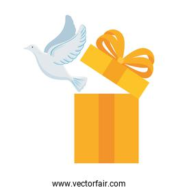 white dove coming out of gift box on white background