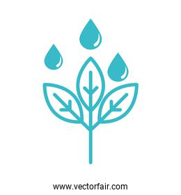 growing plant with water drops nature liquid blue silhouette style icon