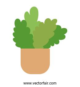 potted plants gardening decoration interior isolated design icon