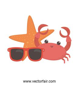 summer travel and vacation beach crab starfish and sunglasses isolated design icon