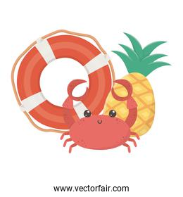 summer travel and vacation beach lifebuoy crab and pineapple isolated design icon