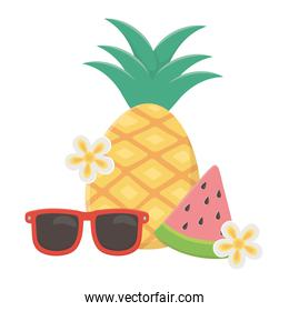 summer travel and vacation beach pineapple watermelon and sunglasses with flowers isolated design icon