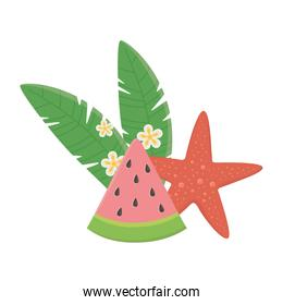 summer travel and vacation beach watermelon starfish flowers and leaves isolated design icon