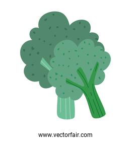 fresh vegetables broccoli diet isolated design icon white background