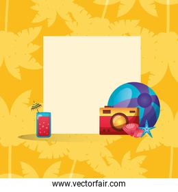 juice camera shells star and ball with frame vector design