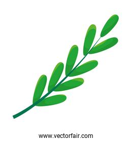 green branch with leaves icon, colorful design