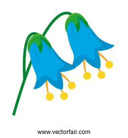 beautiful blue flowers icon, colorful design