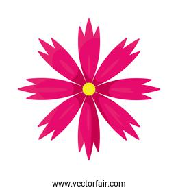 pink flower icon, colorful design