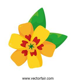 beautiful yellow flower and leaves icon, colorful design