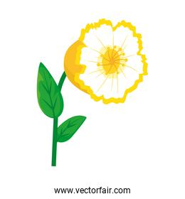 yellow flower with stem icon, colorful design