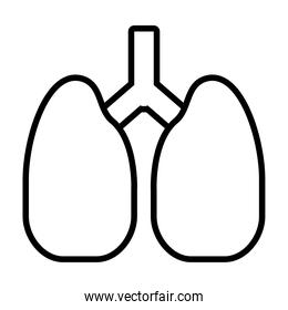 lungs organ icon, line style