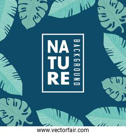 nature wallpaper, frame of tropical nature leaves of pastel color