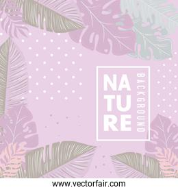 nature background of pink color pastel, tropical nature leaves