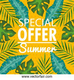 special offer summer, banner with branches and tropical leaves, exotic floral banner