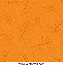 background orange of tropical leaves, summer tropical leaves, summertine background