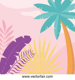 summer time vacation tourism palm trees foliage leaves background