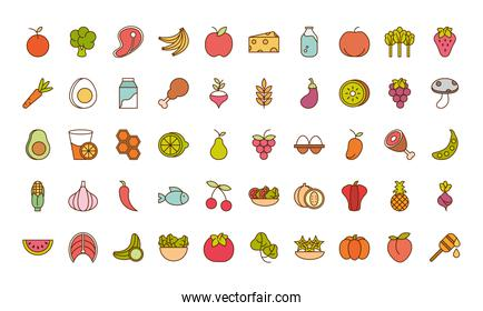 healthy food fresh fruits vegetables and protein ingredient products icons set line and fill style icon