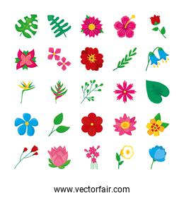 hawaiian flower and colorful flowers icon set, colorful design