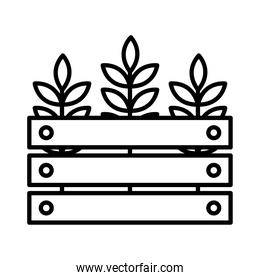 Wheat ears in basket line style icon vector design
