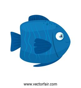 sea underwater life, cute fish, blue color, on white background