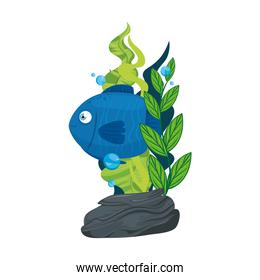 sea underwater life, cute fish blue color with seaweed, on white background