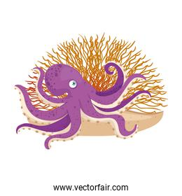 sea underwater life, octopus with coral on white background