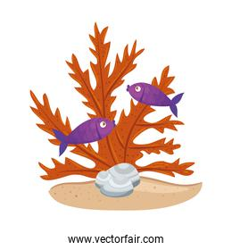 sea underwater life, fishes with seaweed on white background