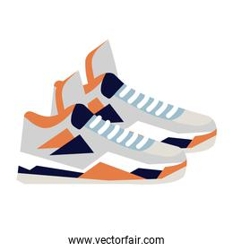 sneaker, shoes basketball on white background