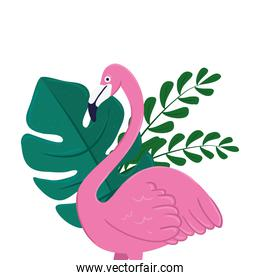 flamingo with tropical leaves on white background