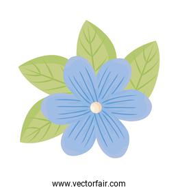 blue flower with leaves vector design