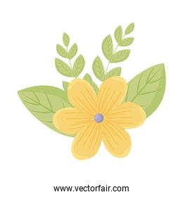 yellow flower with leaves vector design
