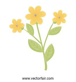 yellow flowers with leaves vector design